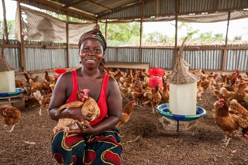 Naisten Pankki Liberia kanalayrittäjä