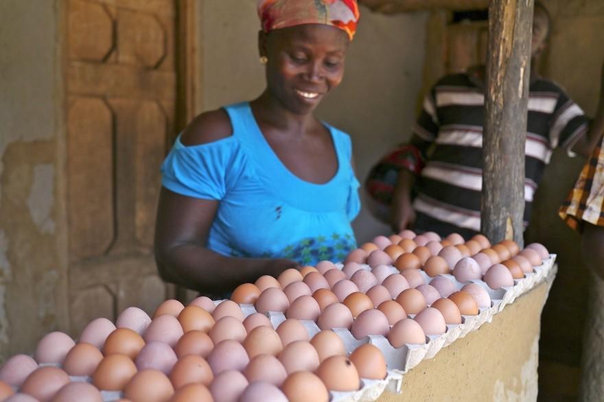 Naisten Pankin kanala-yrittäjä Liberiassa