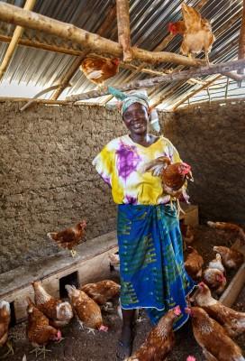 190__kanala,_Liberia,_Naisten_Pankki,_SLPP_poultry_project,_Vonzua3110 (1)