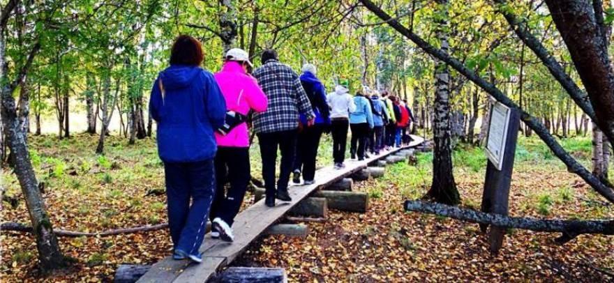 Avap Rovaniemi