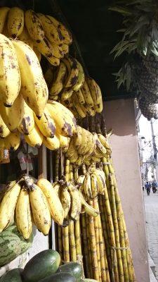Lalitpurin hedelmäkaupoissa riittää tarjontaa.