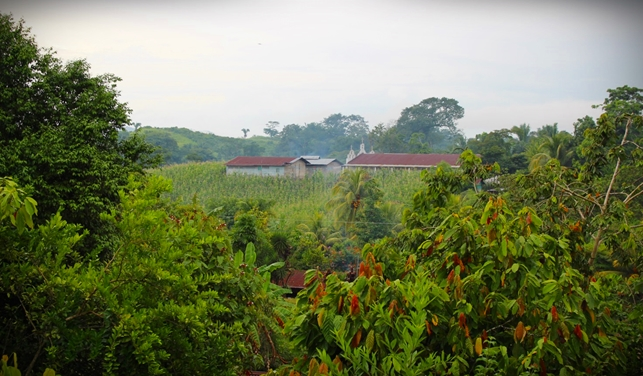 Herlindan talon edustalta aukeaa vihreä maisema.