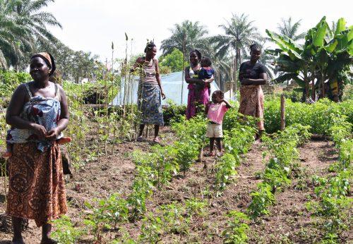 Naisryhmän naiset Wenwolunin johdolla esittelevät ylpeinä kasvimaitaan.