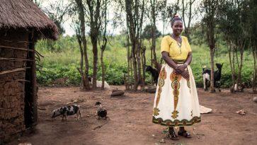 Ugandalainen Sylvia Alinitwe on ostanut säästöryhmän lainalla sikoja, vuohia ja kanoja.