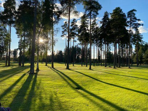 Puiden varjoja golfkentällä.