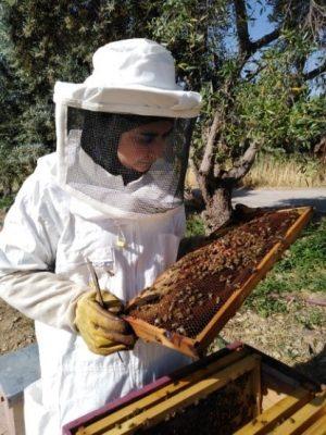 Nainen mehiläishoitajan asussa pitää kädessään mehiläiskennoa.