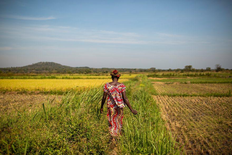 Nainen kävelee pellolla selkä kameraan päin.