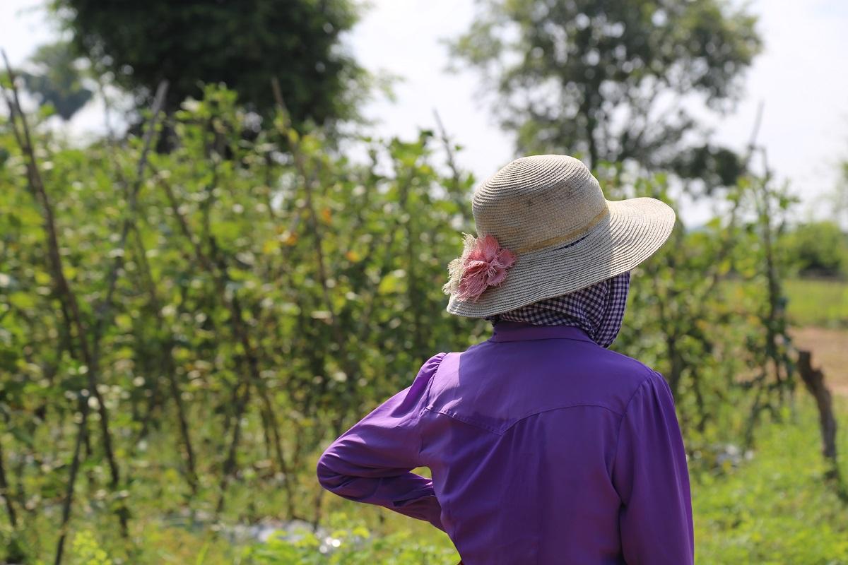 Hattupäinen nainen seisoo pellolla.